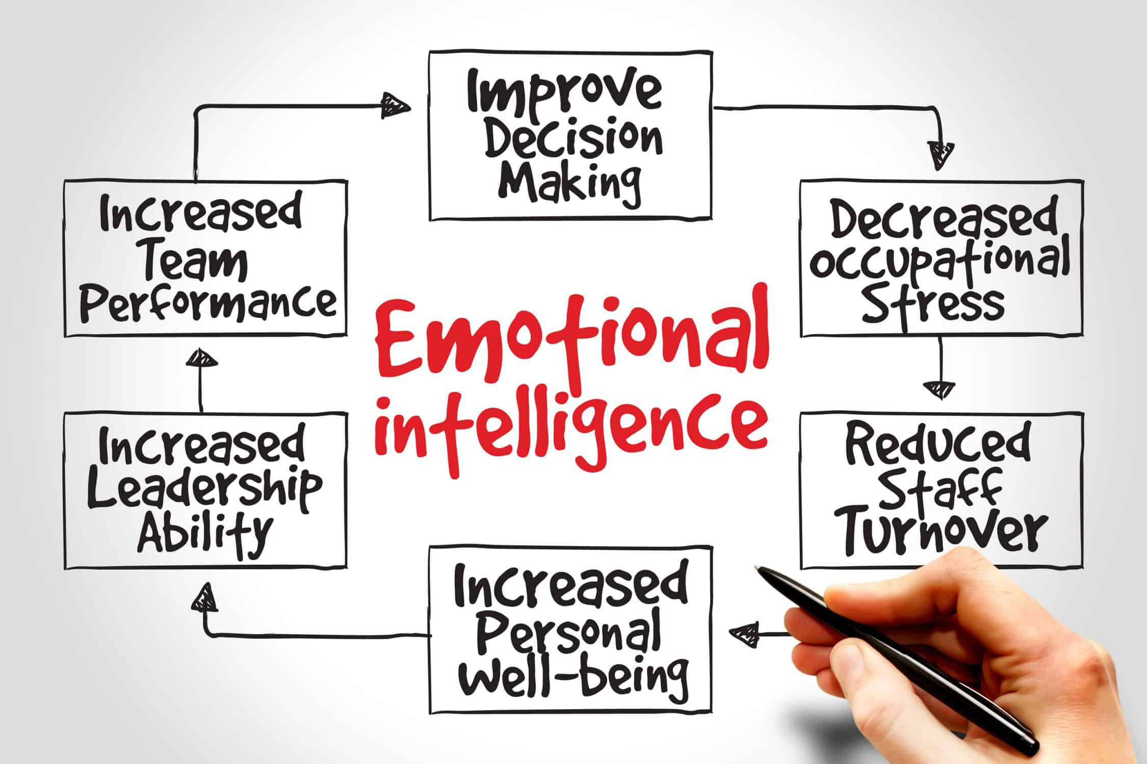 INDIVIDUAL PERSONALITY, EMOTIONAL INTELLIGENCE, AND LIFE OUTCOMES