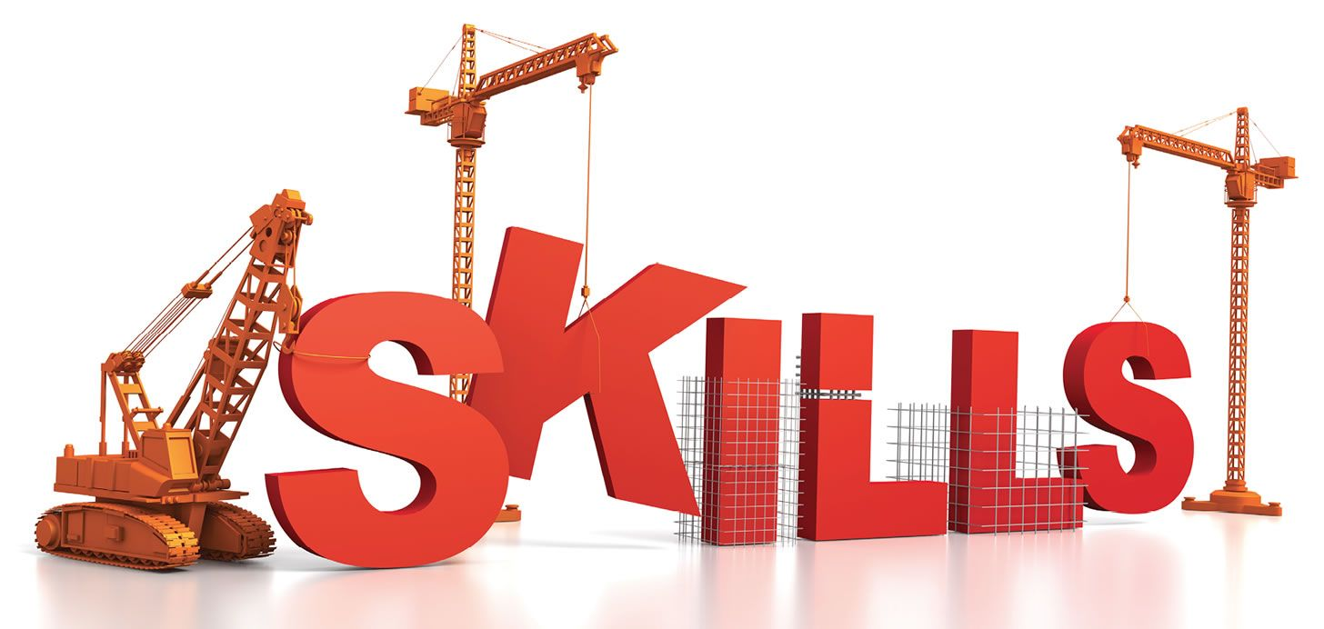 Do not carry out a skills audit instead carry out a Staff Capacity Assessment